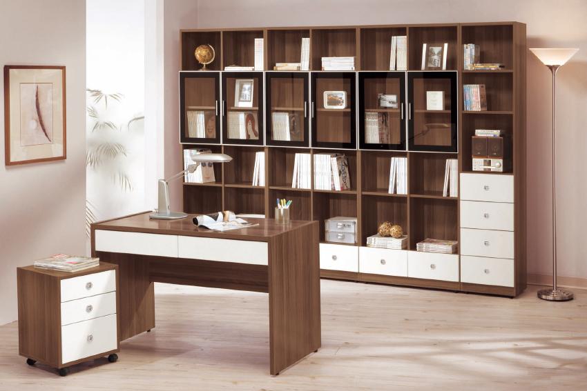 莫里斯2.7尺淺胡桃雙門書櫃